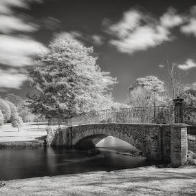 Kearsney Abbey Bridge by Dan Horton-Szar ARPS - Black & White Landscapes ( clouds, countryside, monochrome, park, black and white, infrared, kent, rural, dover, trees, kearsney abbey, bridge, garden, temple ewell, river,  )