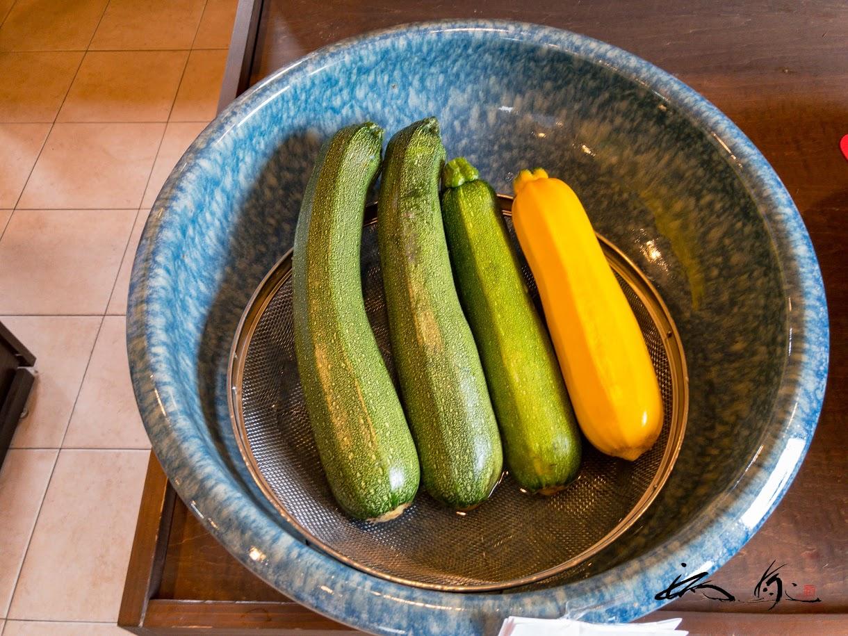 とれたて野菜・ズッキーニ!