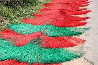 Photo: Year 2 Day 32 - Drying Dyed Reed
