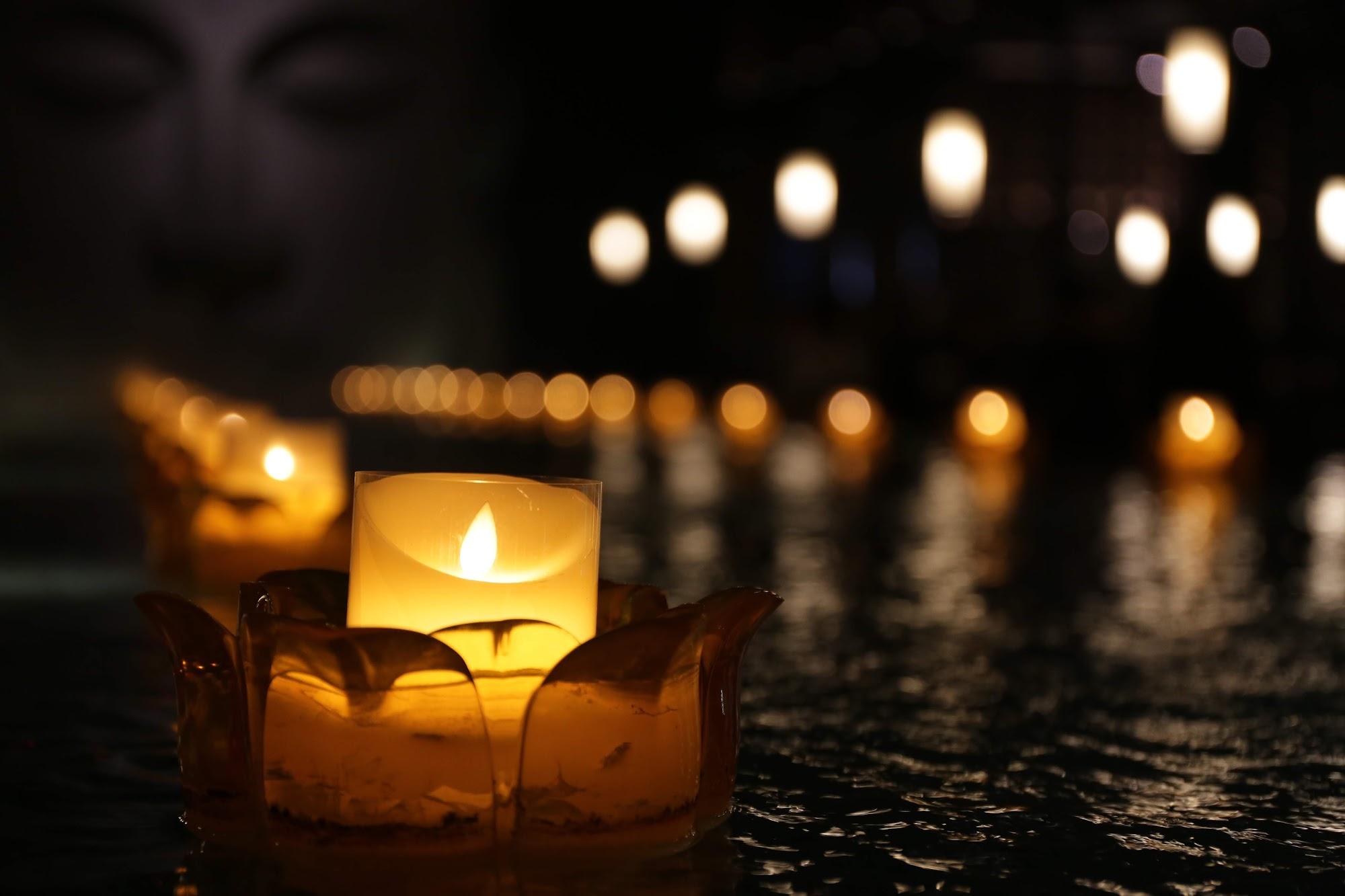 水池上還點著蓮花燈...
