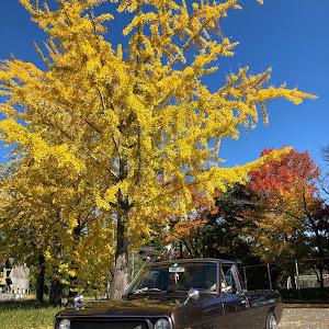 サニートラック  62年式 GB122のカスタム事例画像 sachi_sunnyさんの2020年11月14日18:48の投稿