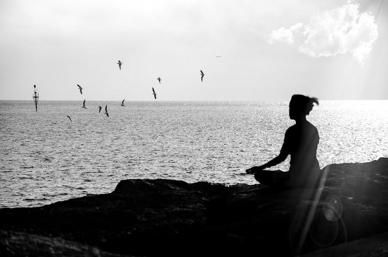 """""""...in meditazione"""" di alberto66"""