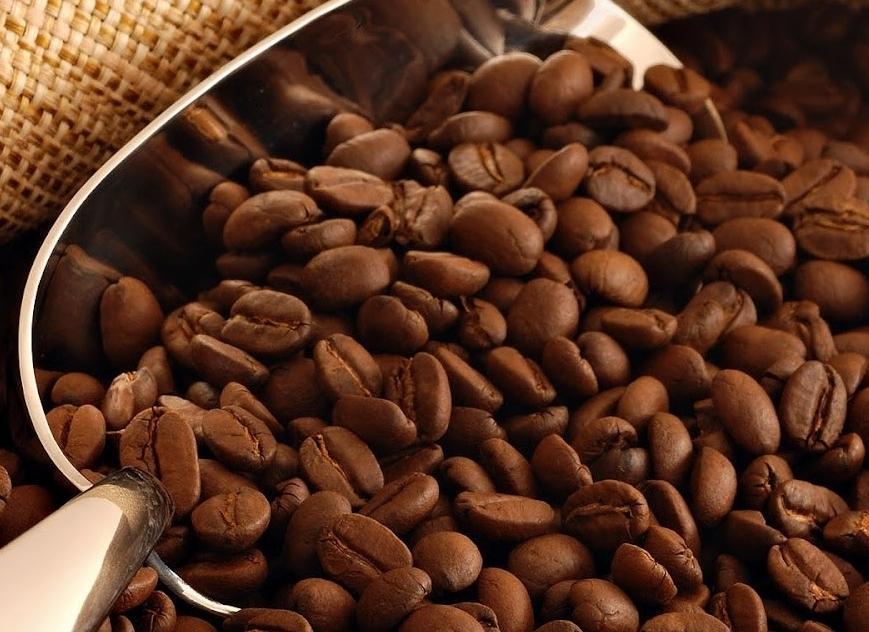 Thương hiệu Motherland chuyên cung cấp cà phê hạt nguyên chất giá sỉ