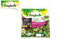 Angebot für Bonduelle Salatlust Beutel im Supermarkt