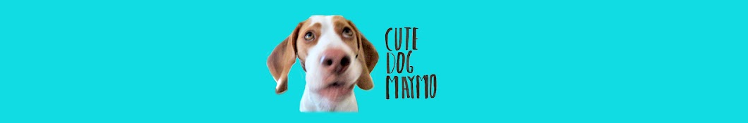 Maymo Banner