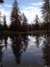 Photo: Giuseppe Peirolo - Lago del Losetto (Frais)