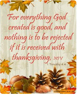 Thanksgiving Inspirational Quotes Magnificent Inspirational Thanksgiving Quotes  Android Apps On Google Play