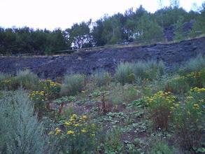 Photo: Stěna odkud zřejmě pocházejí olivíny.