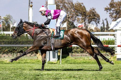 Freccia Rosa (Dangerous Midge) conquista Condicional (1300m-Pasto-CHS). - Staff ElTurf.com