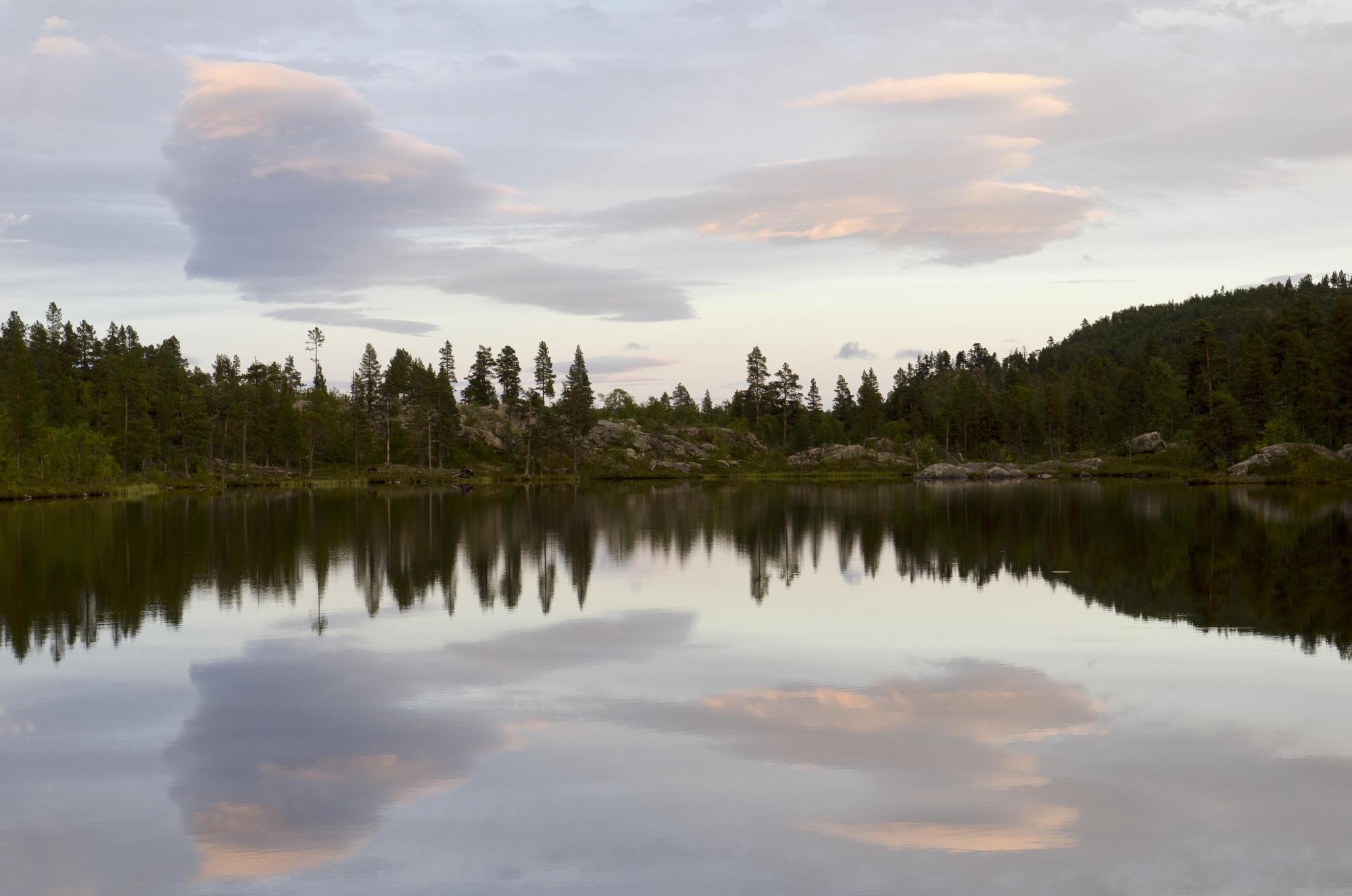 REFLECTION di rominafiaschiphotography