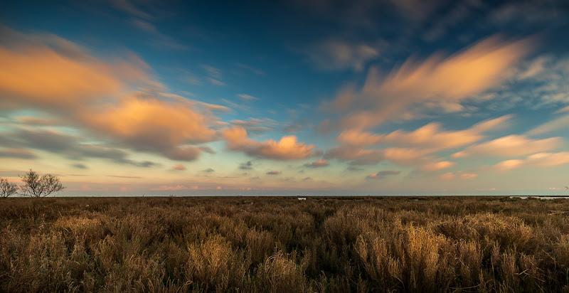 Corre in maniera stupenda il cielo, a giudicare dalle nuvole. di roberto_carrara