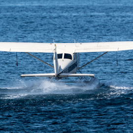 Take Off by Keith Sutherland - Transportation Airplanes ( plane, sea plane )