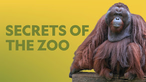 Secrets of the Zoo thumbnail