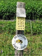 Photo: Pollinator habitat is a focus of John and Nancy Hayden's farmer grant...and farm!