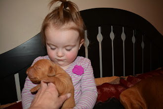 Photo: getting ready to plant another kiss on puppy