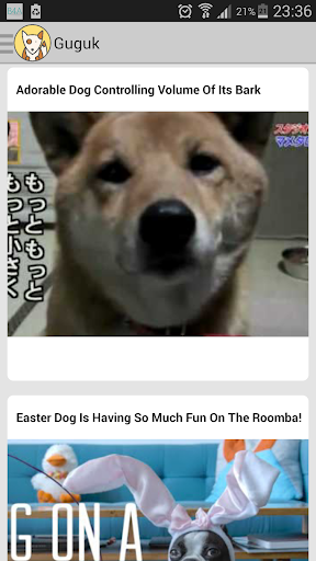 Guguk - Free Daily Dog Video