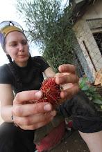 Photo: Atvažiavę į vieną iš miestelių nuėjome į turgų ir prisipirkome dar neragautų vaisių.  We came to one town's bazaar and bought all the untried fruit we found.