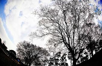 Photo:  原