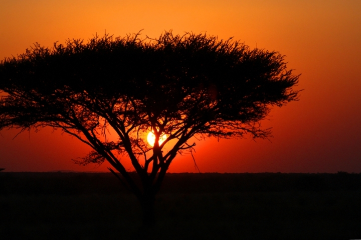 Africa addio di paolo-spagg