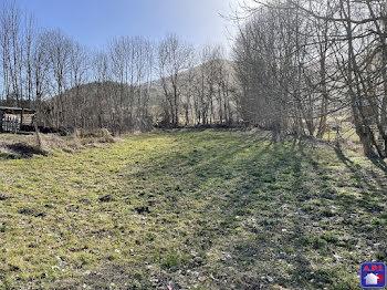 terrain à Belcaire (11)