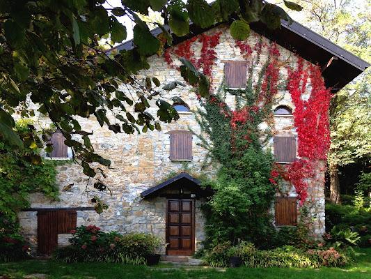 La casa nel bosco. di GabrieleT