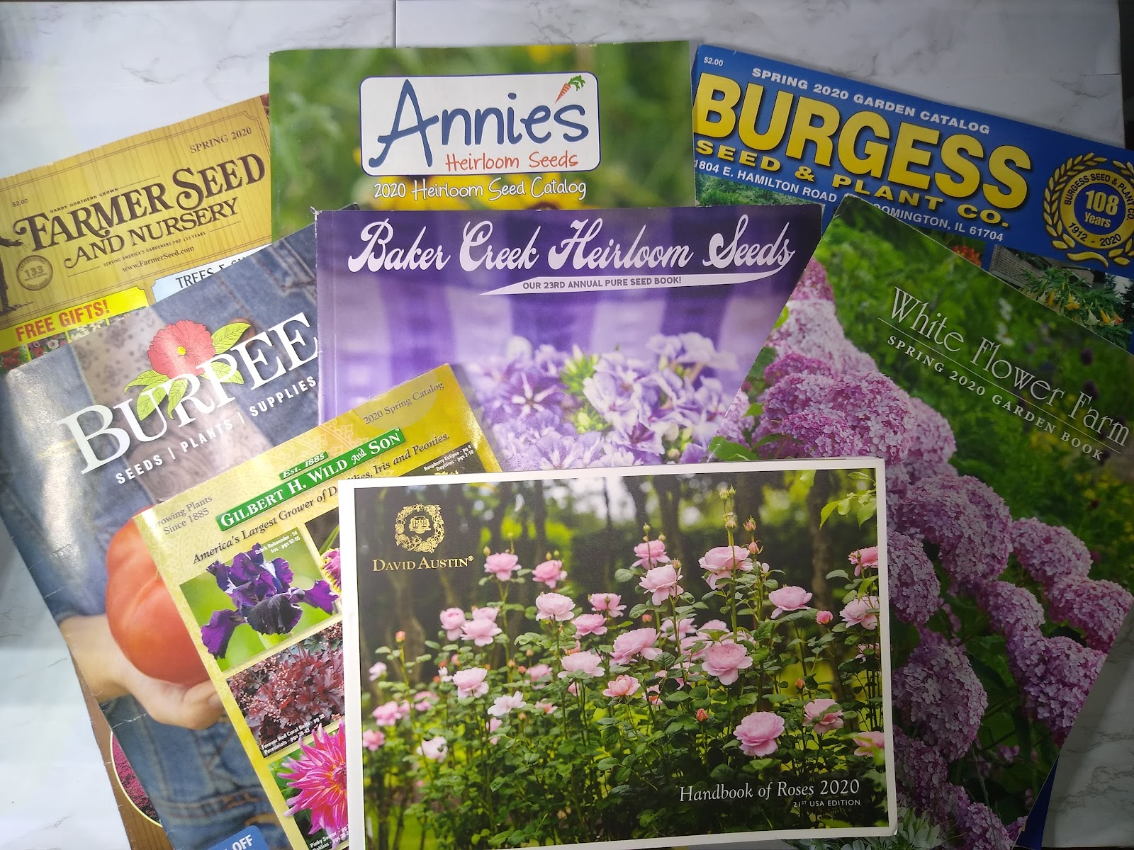 garden catalogs picture