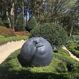Etreta garden by Eugen Opritescu - Nature Up Close Trees & Bushes ( bushes, france, garden, sculpture, normandie, summer )