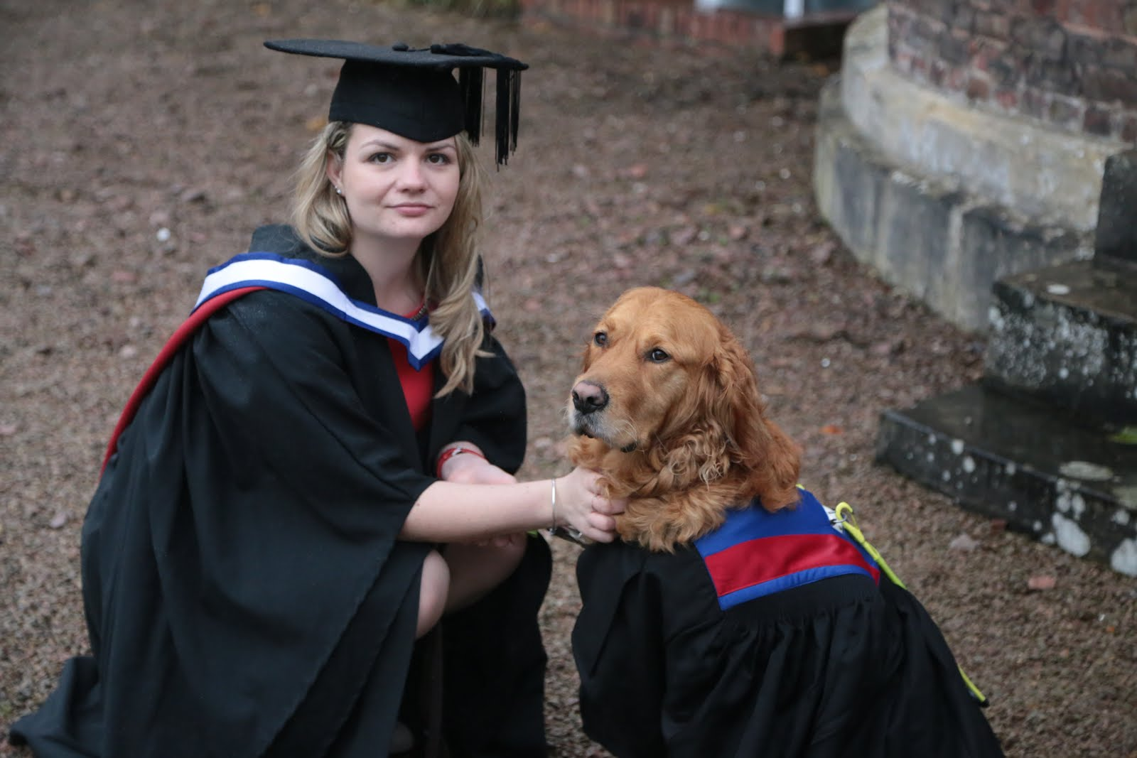 Graduation Gown for Guide Dog