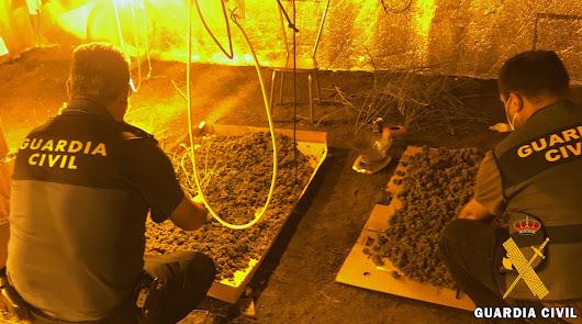Detenida en un cortijo de Tabernas con más de cuatro kilos de marihuana