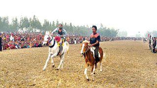 Photo: Horse race in Debiganj in 2009 [Courtesy Jaijaidin]