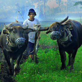 by Tri Hendro Kusumo - People Street & Candids