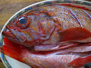 Photo: clear- and bulgy-eyed fresh snapper