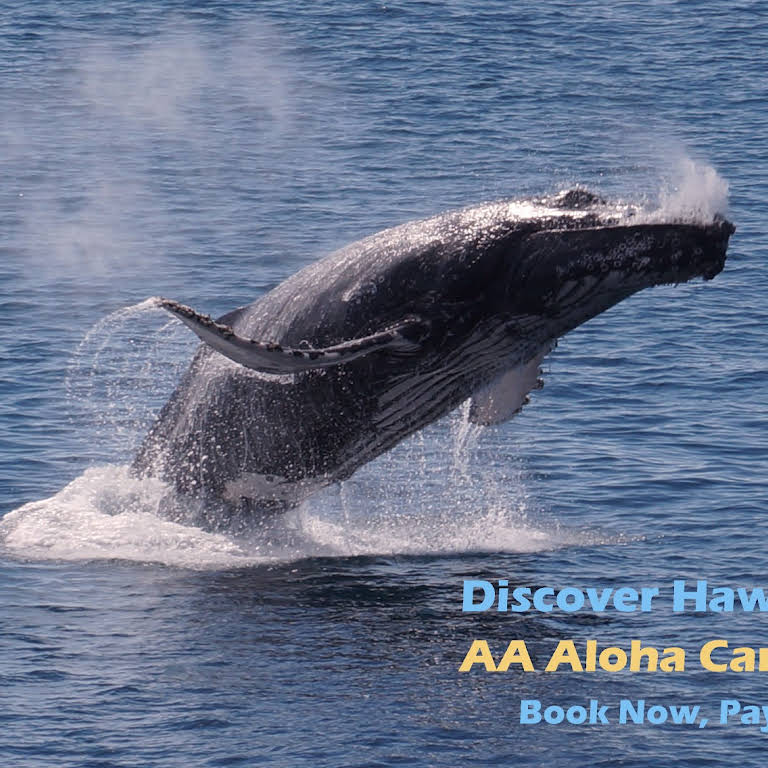 AA Aloha Cars-R-Us - Car Rental Agency In Kihei