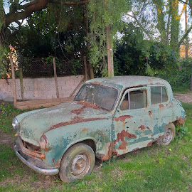 Old car by Leandro Navarro - Artistic Objects Antiques ( old, antiguo, abandonado, card )