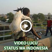 Video Lucu Status WA