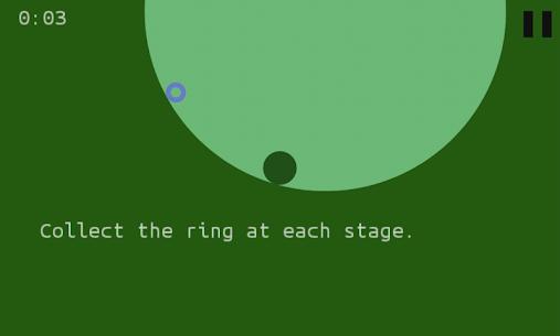 Circle in a Circle 1