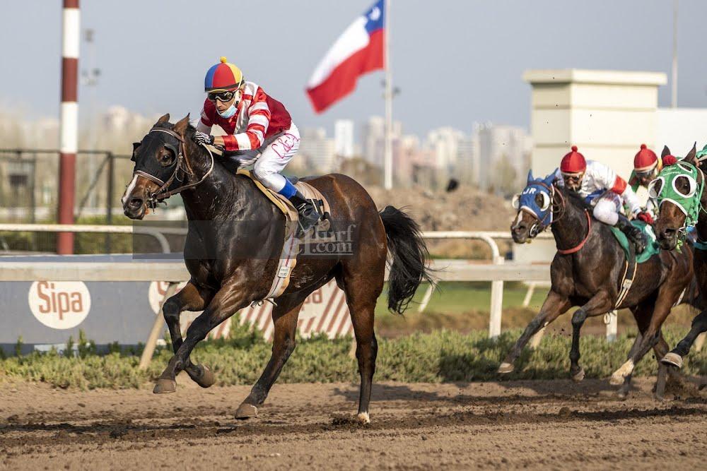 El Negro Tomas (Mr Speaker) ganó Handicap (1000m-Arena-CHS).