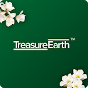 Treasure Earth icon