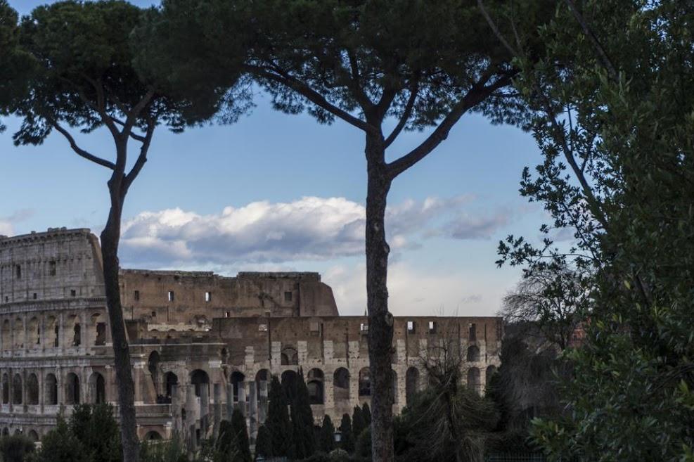 El Coliseo desde el Palatino.