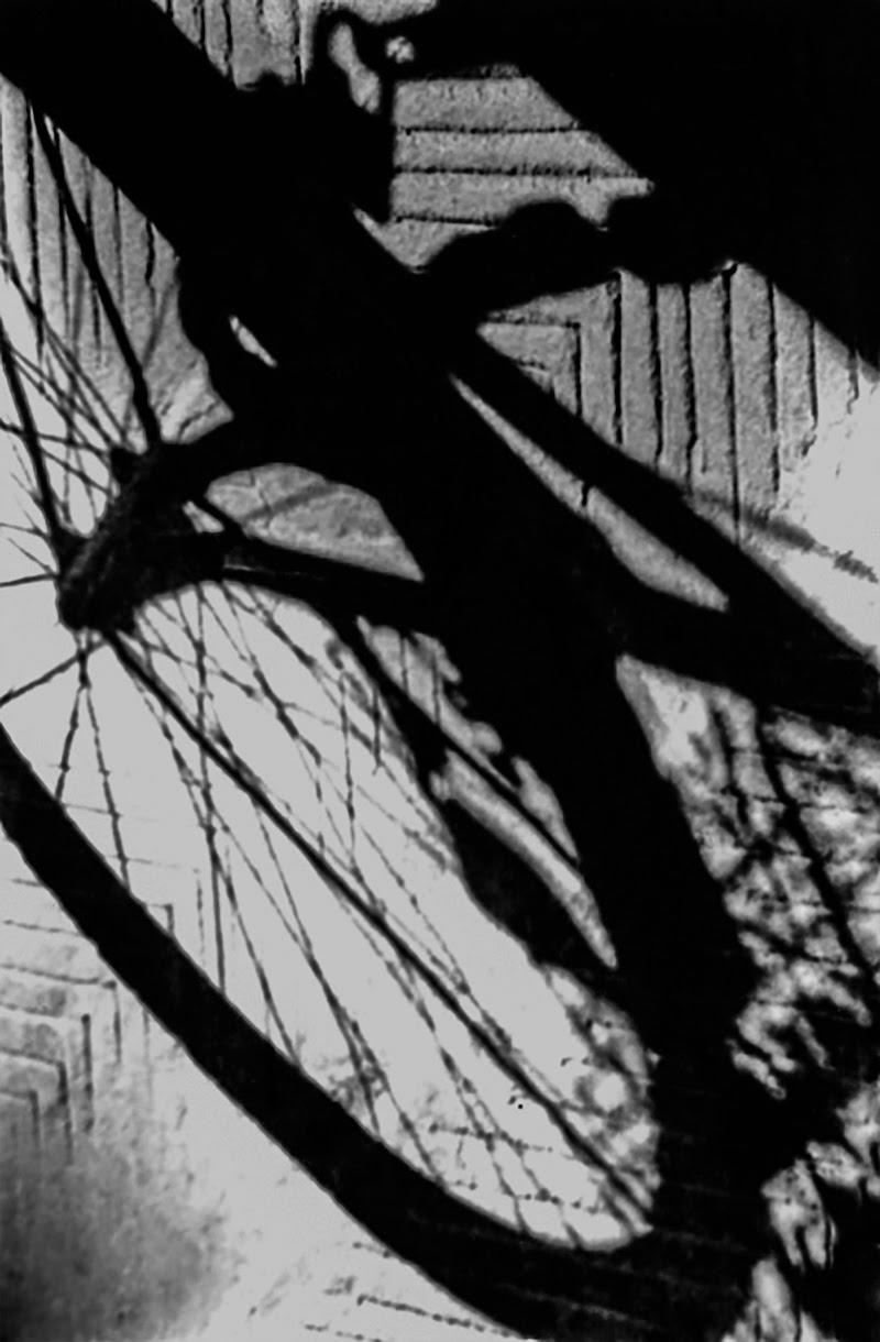 La verità delle ombre di astridloro