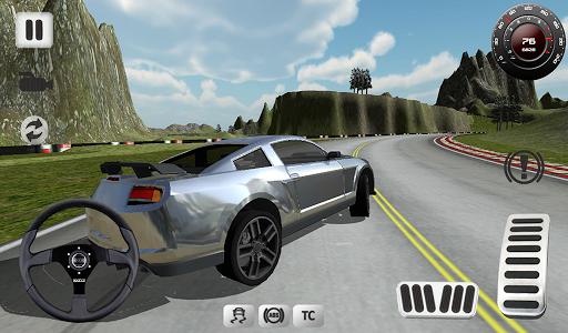 Sport Car Simulator image | 13