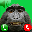 Monkey call icon