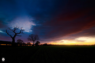 Photo: Glow. Waiting in a field for the sun to rise has its benefits, not only do you take yourself away from the rest of the world you get to watch as it wakes up. I noticed the country lane on the left of me start to have some traffic use it. I set my camera up on a slow shutter speed and waited for a car to pass. As one did I managed to get its headlights streaming through the bushes. It adds a whole new dimension to what would be a normal sunrise.