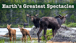 Earth's Greatest Spectacles thumbnail