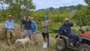 Queensland: Fishing, Farming & Flying thumbnail