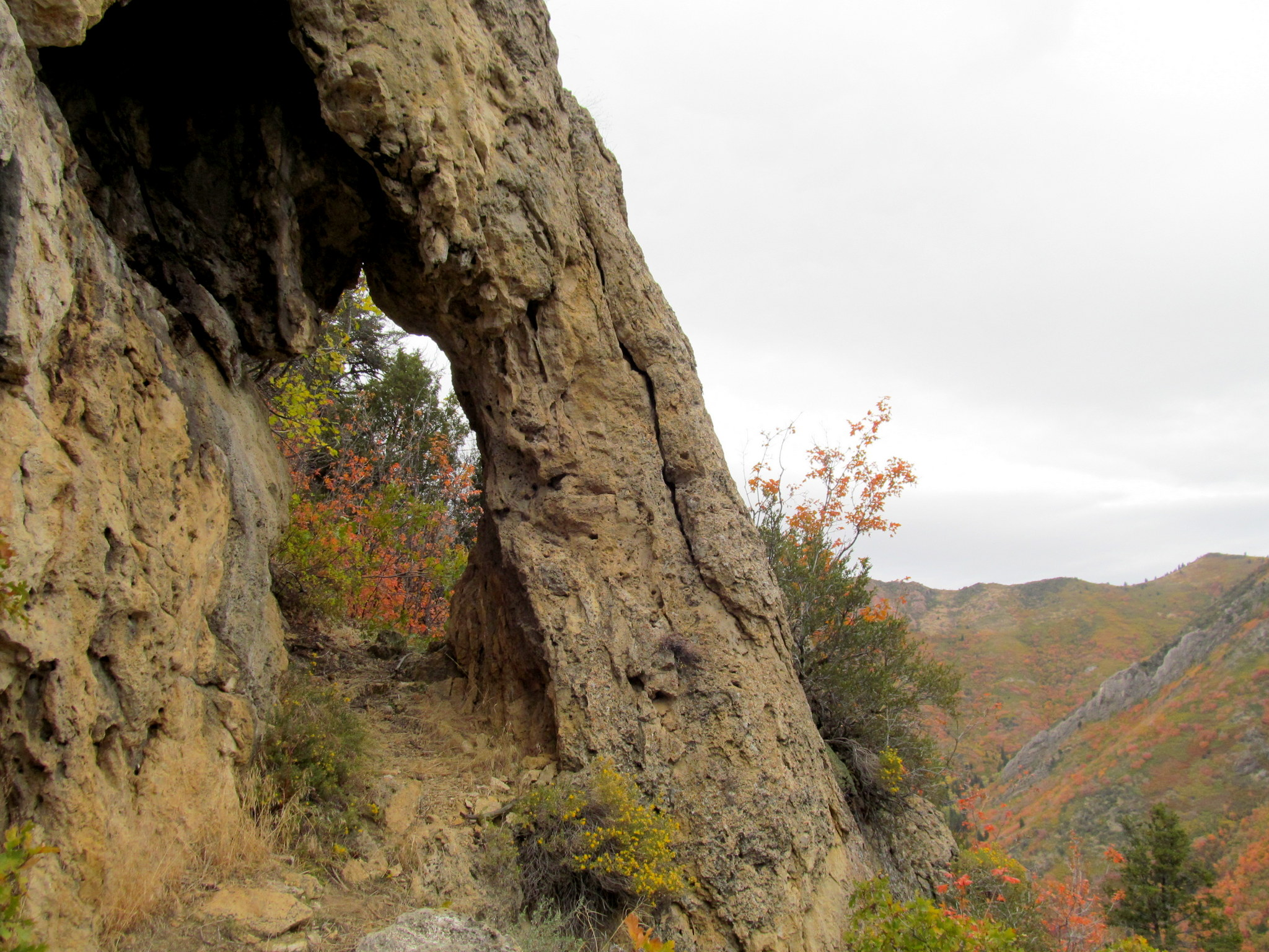 Photo: Bill's Arch
