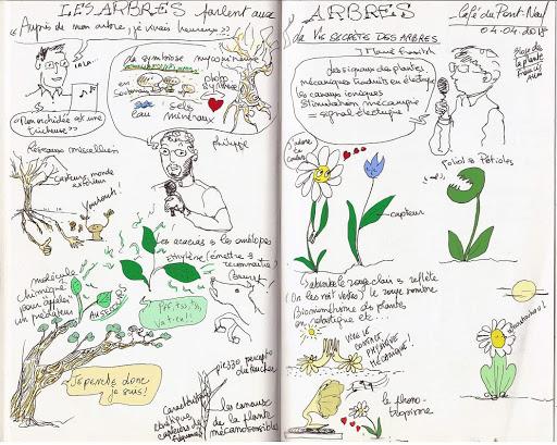 Prise de notes visuelle Les arbres parlent aux arbres