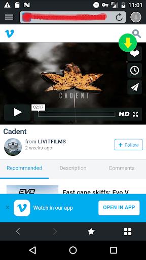 Video Downloader 1.8.8 screenshots 5