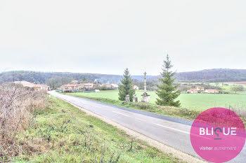 terrain à Jaulny (54)