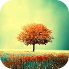 Awesome-Land Live wallpaper HD : Grow more trees icon